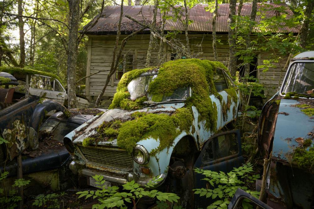 autofriedhof-schweden-vaermland-sehenswuerdigkeiten-vaermland-reisetipps-ferienhaus-unternemungen-ausflug-foxen-aktivitaeten