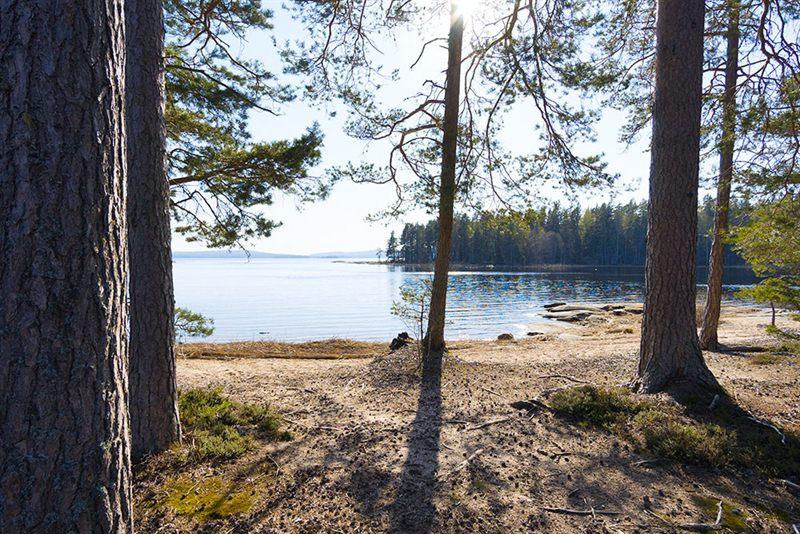 Badestelle-Strand-Sandstrand-Baden-Foxen-See-Picknick-Stelle-Sonnenbaden-Urlaub-Badestrand-Sommerurlaub