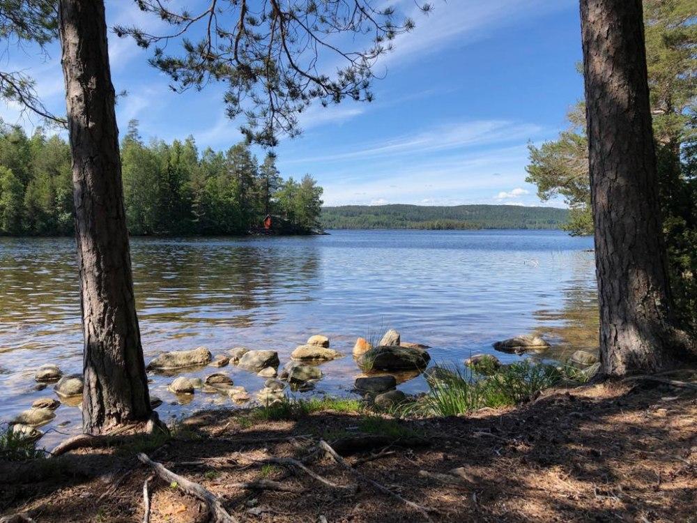 Glaskogen Naturschutzgebiet Naturreservat