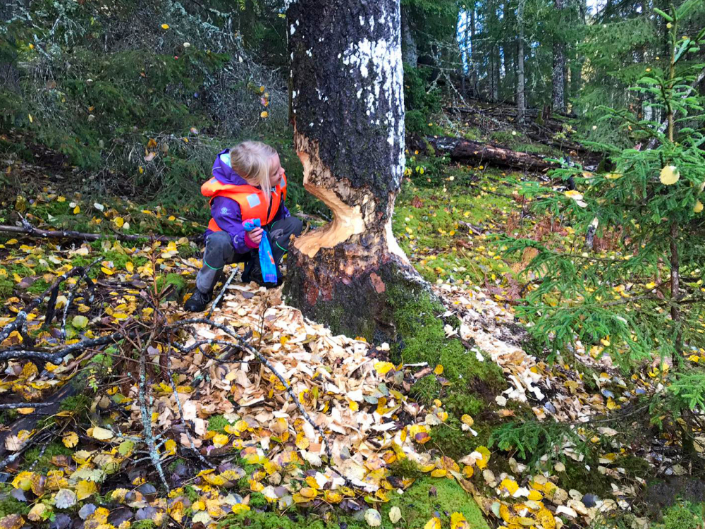 Kind-Urlaub-Familienurlaub-Ferienhaus-Foxen-Resort-Natur-2